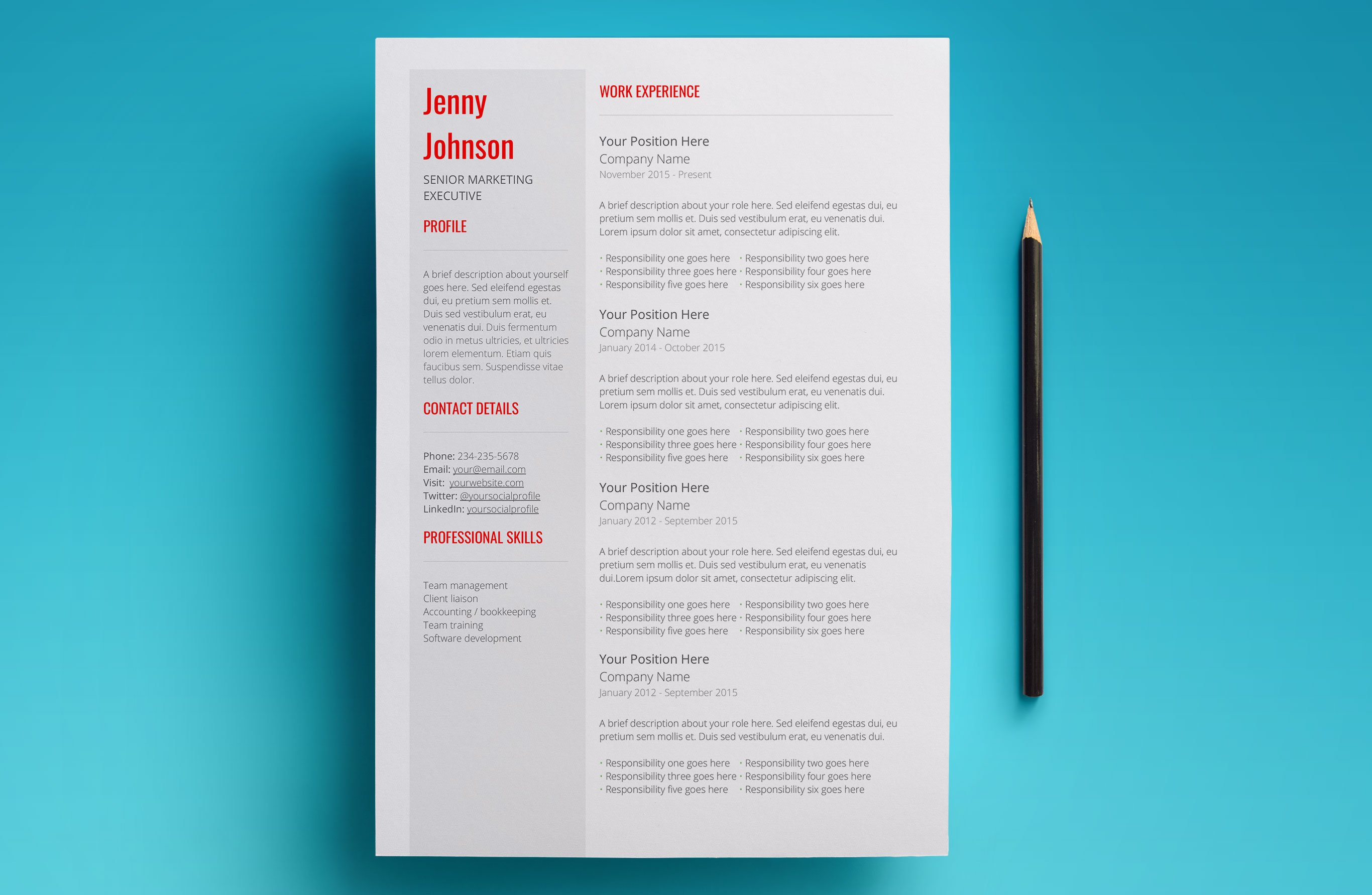 Ccna Resume Template Cosy Networking Engineer Resume Doc With