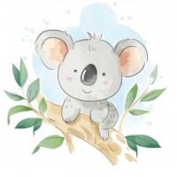 I've adopted a Koala!