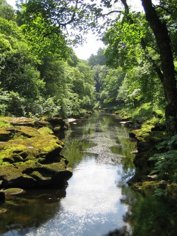 the bolton Strid looks peaceful but is actually one of the most dangerous bodies of water on Earth.