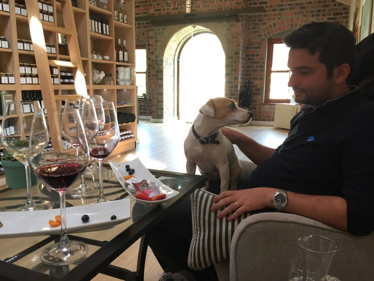 Wine tasting for dog lovers? La Bourgogne is the place