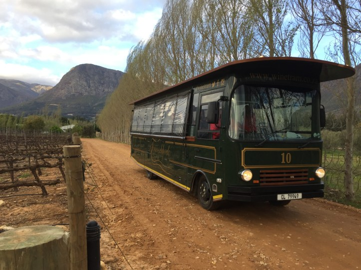 Franschoek Wine Tram experience, south africa
