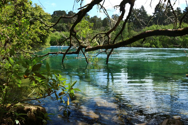 hike along the Waikato river, Taupo New Zealand