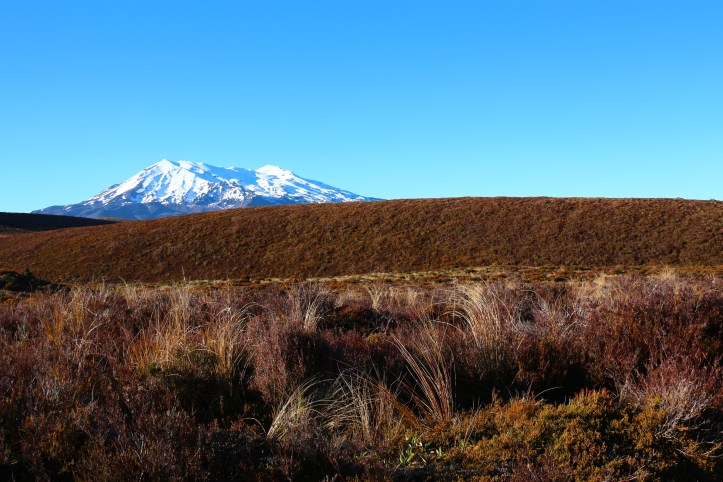 Mount Ruapehu snowcapped peak at Tongariro Alpine Crossing, New Zealand