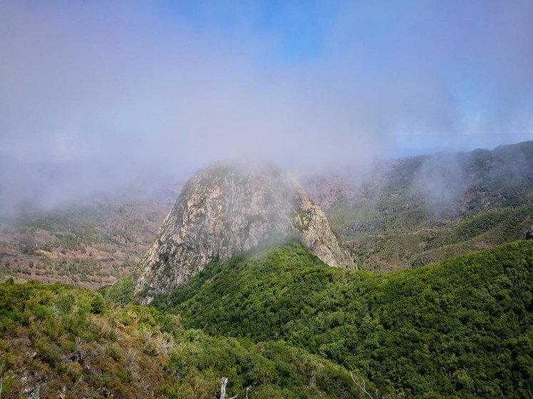 Laurisilva forest under Los Roques, La Gomera Garajonay National Park