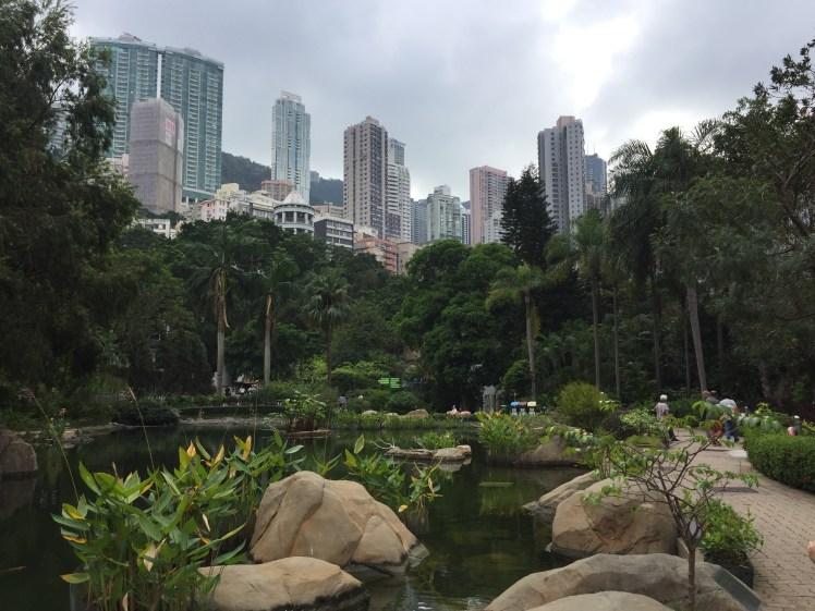 short stay in Hong Kong, visit the Hong Kong Park, skyline view