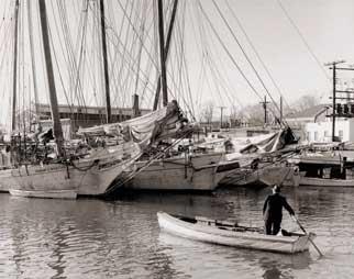 Sunday morning sculling in City Dock, circa 1950