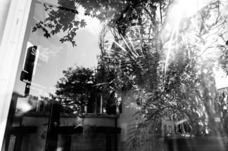 allisonzaucha-editorial-upstart-annapolisimg_2056