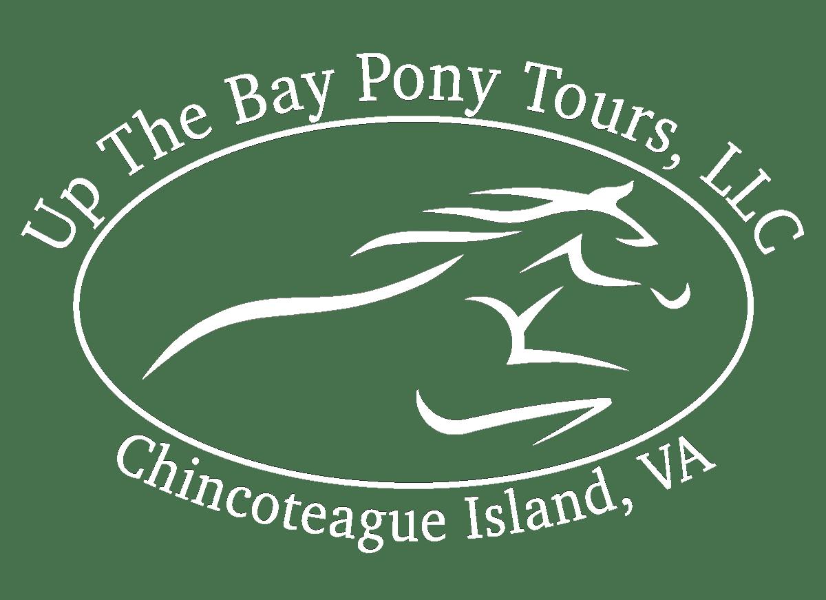 Transparent White Logo
