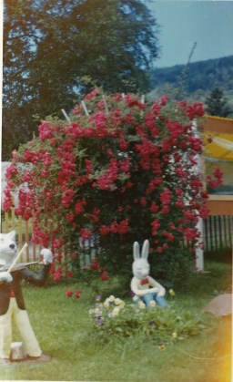 Wolf, Bunny and roses at Fairyland