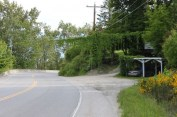 Virginia Creeper Thunderbird at the foot of Boyer Road-5-mile 2014