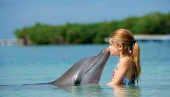 As crianças e os animais de estimação. Posso ter um golfinho?