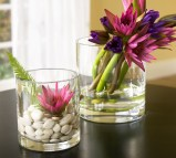 Add Nature To Your Home Decor 3