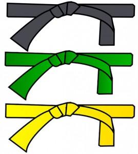 lss-ceinture
