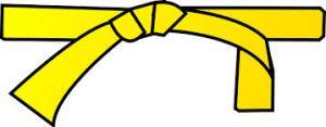 LSS ceinture jaune