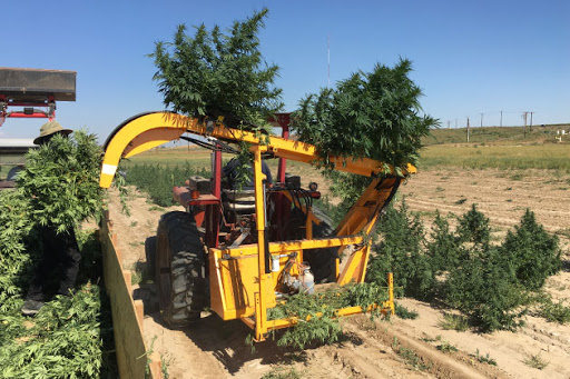 cannabis harvesting equipment financing