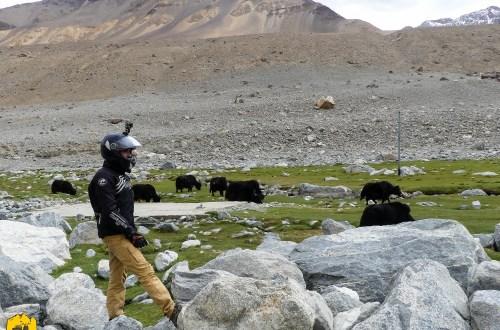 Voyage moto dans l'Himalaya; le Ladakh en Royal Enfield