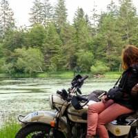 Road-trip à moto Dans les Vosges sud et le vignoble alsacien, notre repérage de l'itinéraire