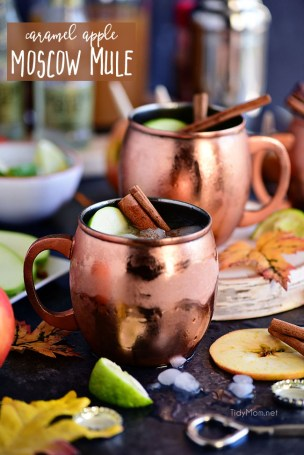 caramel-apple-moscow-mule-picture