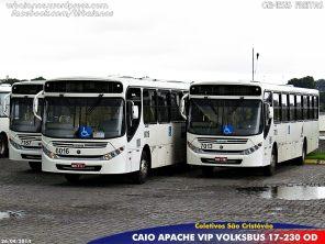 Nessa remessa foram adquiridos 50 ônibus.