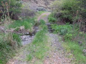 Fording a creek.
