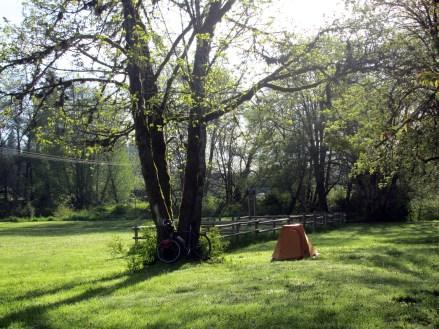 Kai's campsite, Anderson Park.