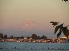Mount Hood looms large over the Columbia, as daylight fades.