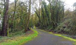 Water Board Park Road