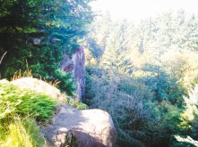 Cliffs of Rocky Butte