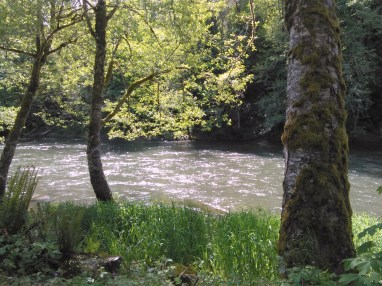 from-sundays-coastminitourmay2017-heading-down-the-lower-nehalem-river-from-us-26-to-us-101_34897497516_o