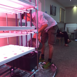 Sustainability expert Dr. Ian Tennant from Local Roots Limited installing the VydroFarm from HydroGarden