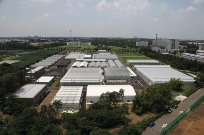 Five-day Introductory Training Course on Plant Factory with