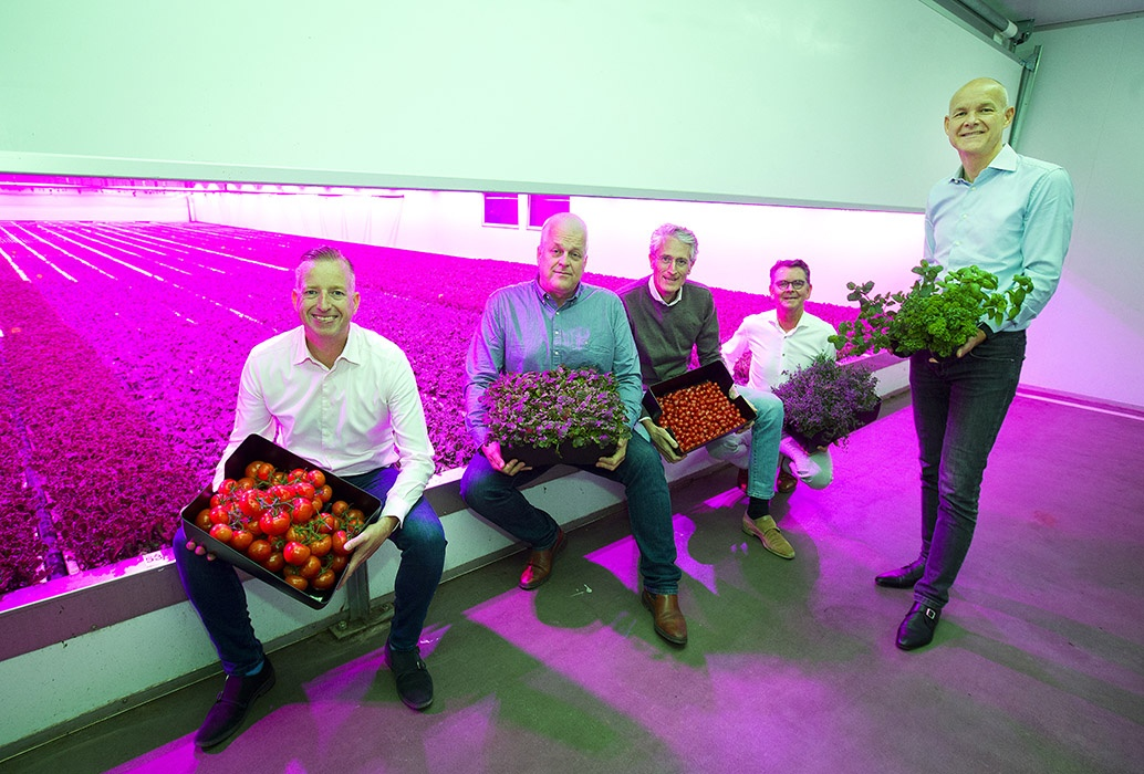 Dutch PlantLab Management