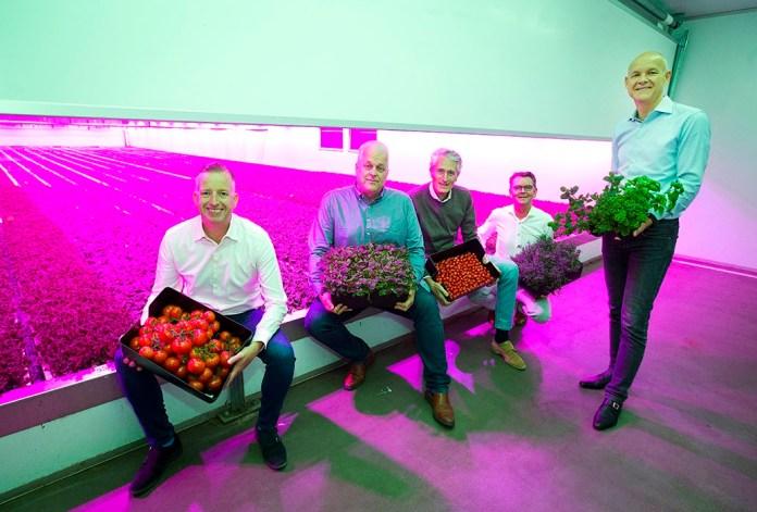 Dutch PlantLab raises € 20 million in first external investment round