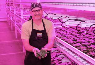 Robert Colangelo at Green Sense Farms