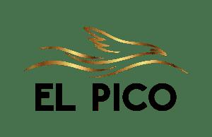 Proyecto El Pico e1610489240304