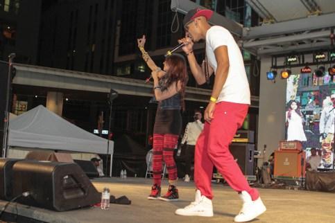3375-DesiFest-05-26-2012