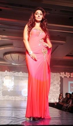 Main Tamanna Documentry Trailor Launch & Fashion Show DSC_0678