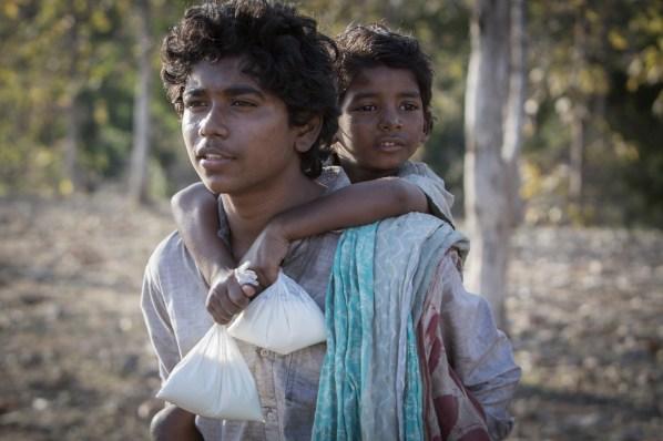 lion_abhishek-bharate-sunny-pawar1