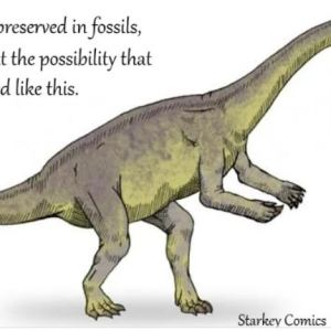 Dinosaur Memes for When You Need to Smile