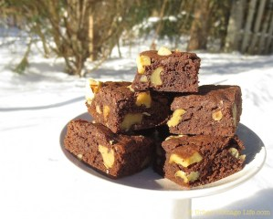 Nut-Topped Cocoa Brownies   © UrbanCottageLife.com