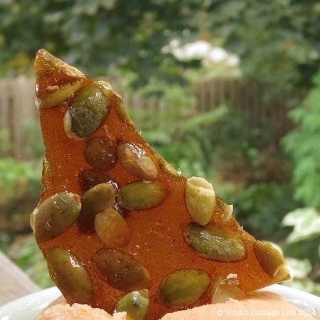 Pumpkin Ice Cream & Pepita Brittle | © UrbanCottageLife.com
