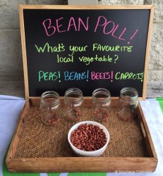 Bean Poll!   © Marlene Cornelis