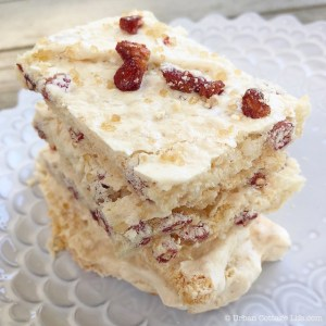 Pomegranate Coconut Meringue Bark | © Urban Cottage Life.com