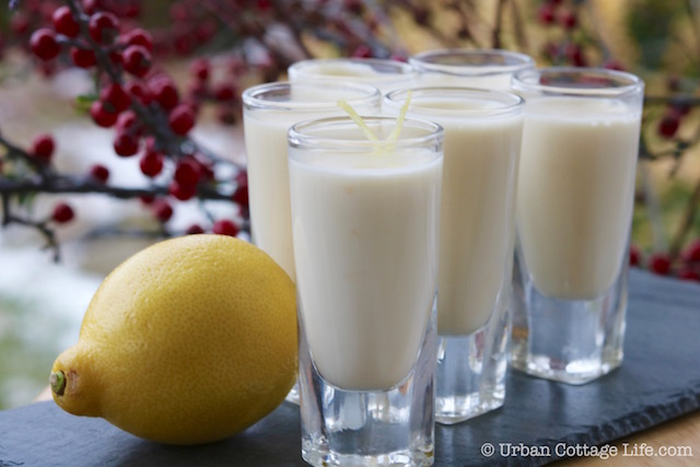 Lemon Posset | © UrbanCottageLife.com