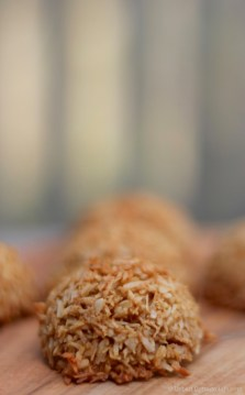 Coconut Sugar Macaroon Bites  © UrbanCottageLife.com
