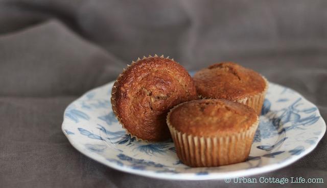 Coconut Mango Muffins | © UrbanCottageLife.com