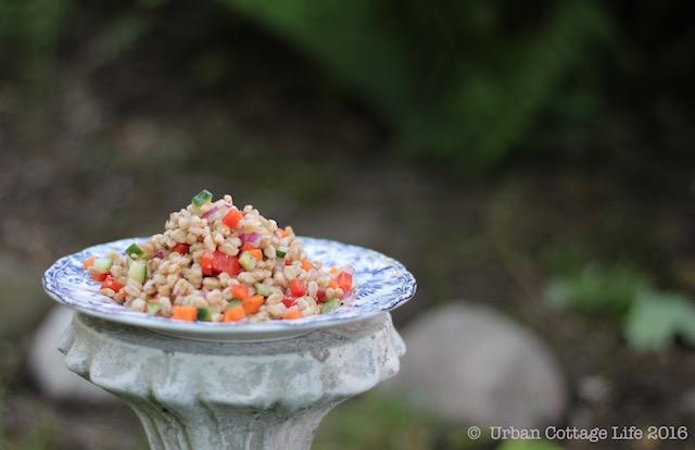 Farro Salad   © UrbanCottageLife.com