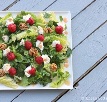 Pickled Strawberry, Goat Cheese & Honeyed Walnut Salad   © UrbanCottageLife.com