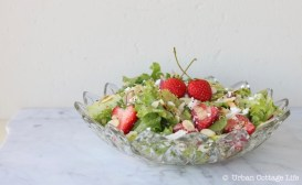 Strawberry Basil Salad with Orange Poppy Seed Dressing | © UrbanCottageLife.com