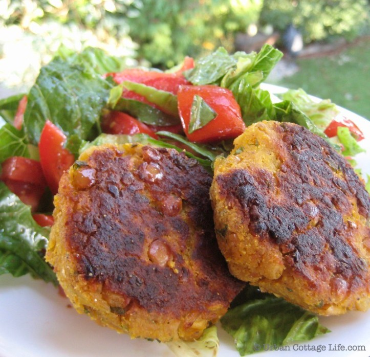 Two Butternut Squash and Chickpea Cakes on a Bed of Green Salad and Tomatoes